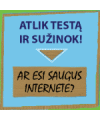 Ar esi saugus internete?